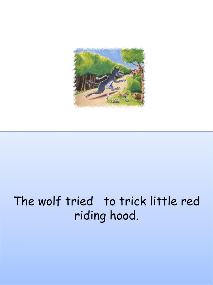 The wolf tried   to trick little red  riding hood.