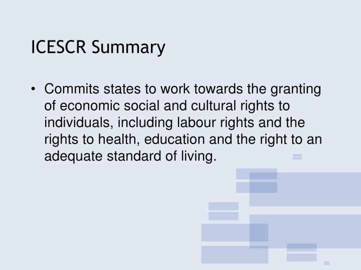 ICESCR Summary