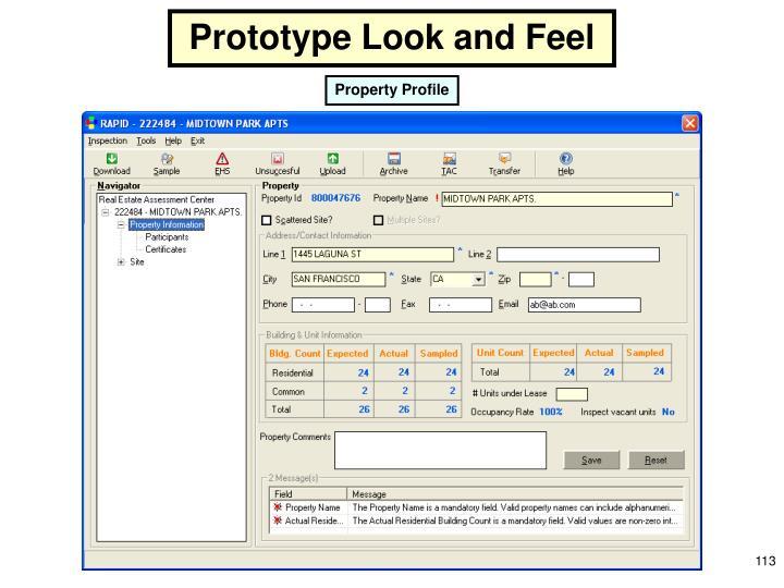 Prototype Look and Feel