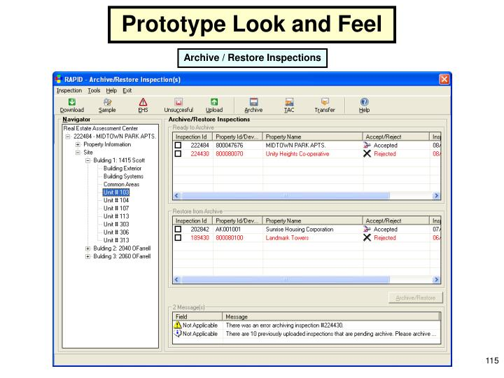 Prototype Look and Feel