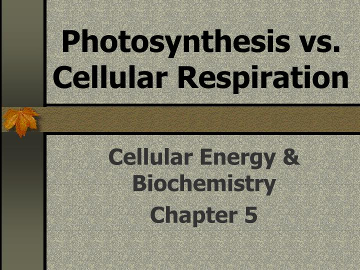 Photosynthesis vs cellular respiration