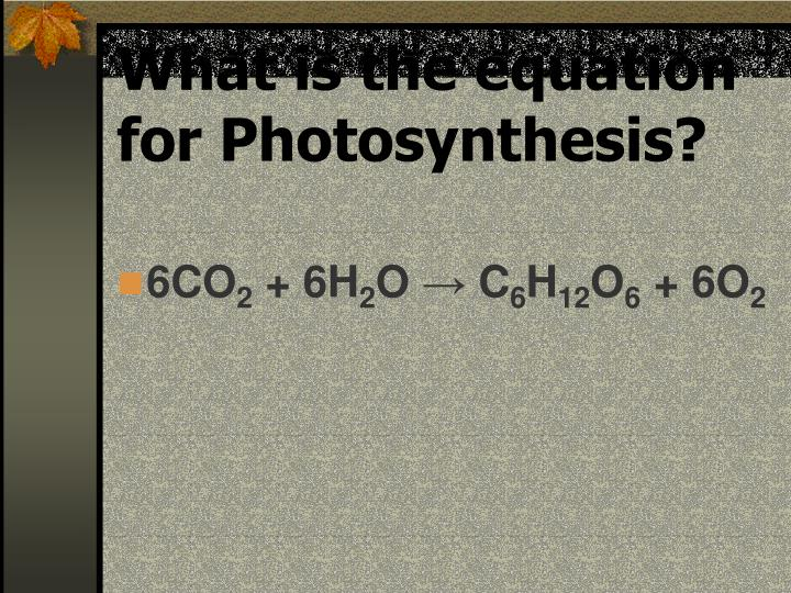 What is the equation for Photosynthesis?