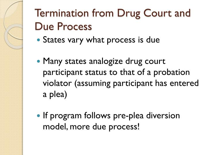 Termination from Drug Court and Due Process