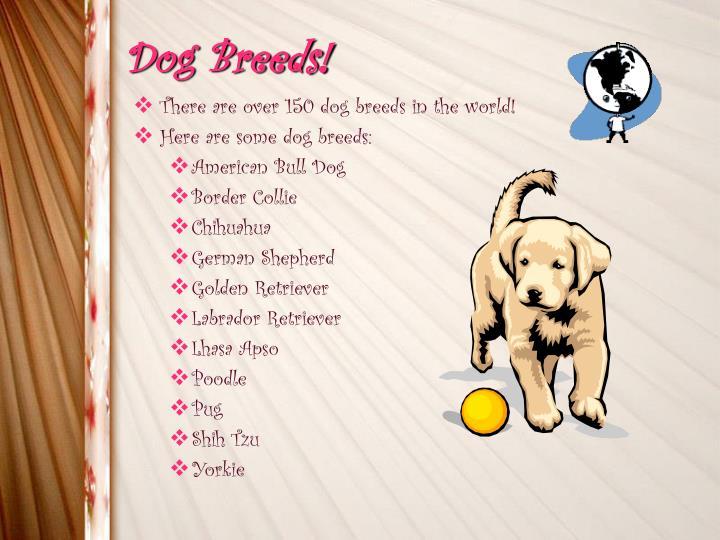 Dog Breeds!