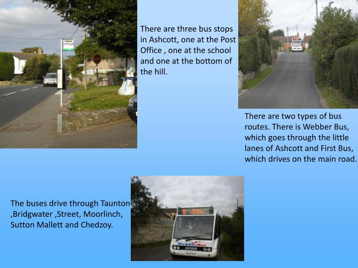 There are three bus stops in Ashcott, one at the Post Office , one at the school and one at the bottom of the hill.