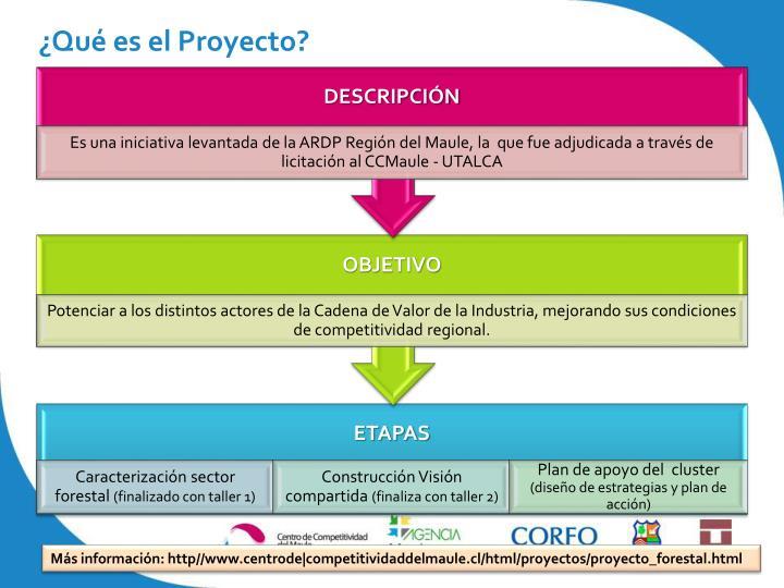 ¿Qué es el Proyecto?