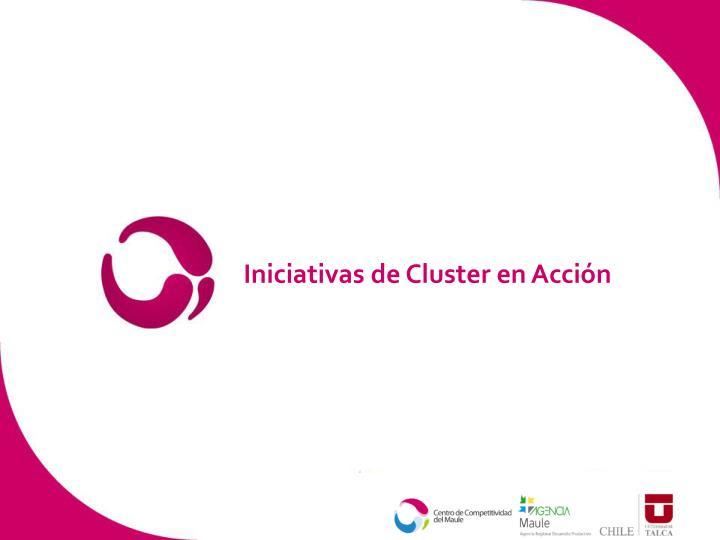 Iniciativas de Cluster en Acción