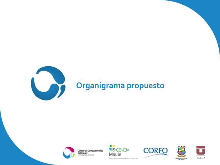 Organigrama propuesto