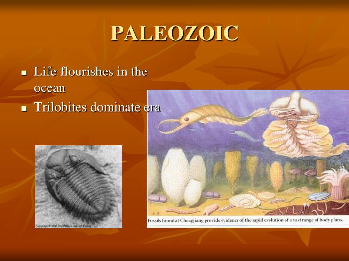 PALEOZOIC