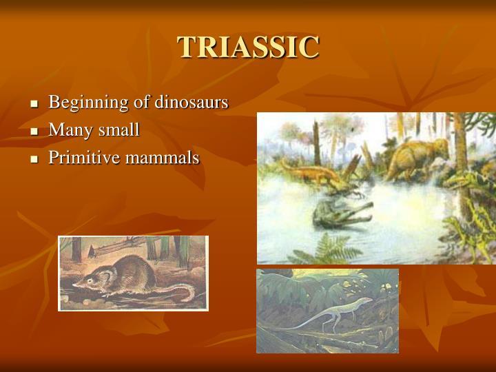 Beginning of dinosaurs