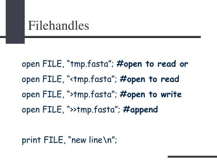 Filehandles