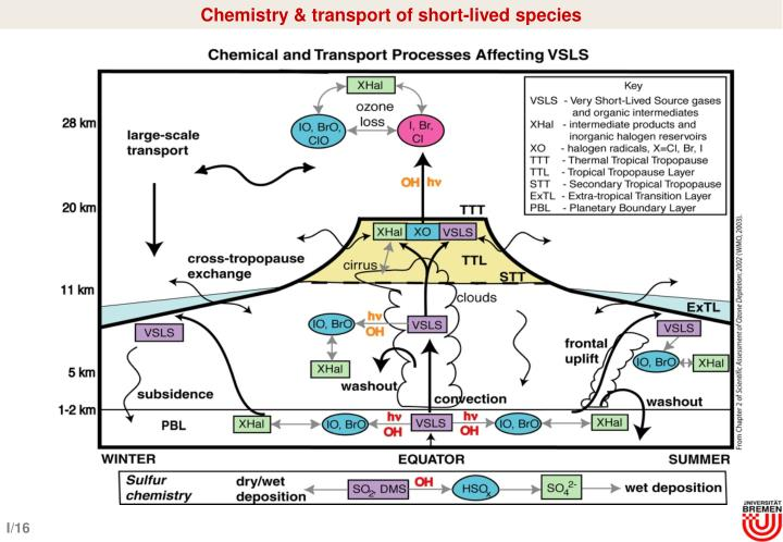 Chemistry & transport of short-lived species