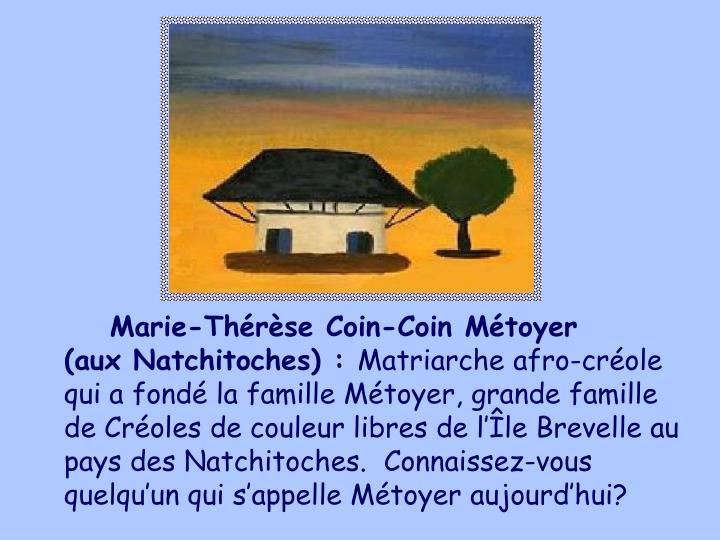 Marie-Thrse Coin-Coin Mtoyer
