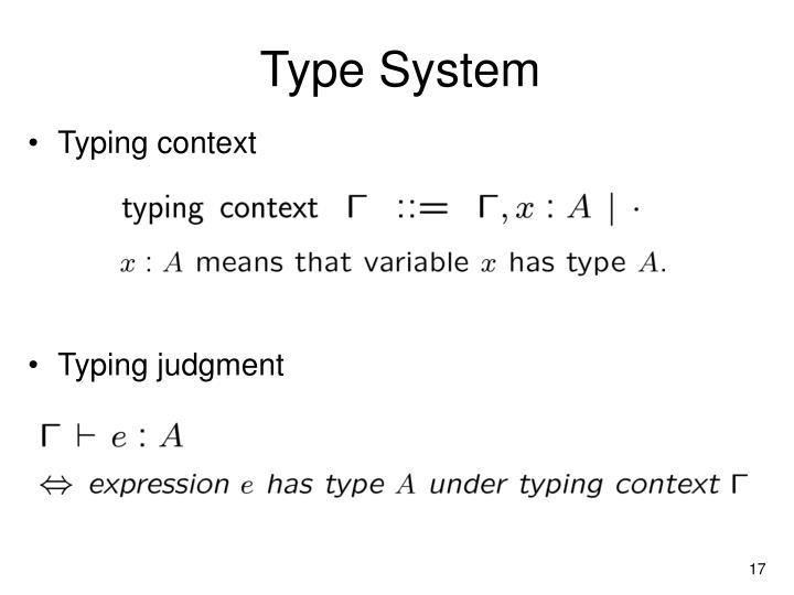 Type System
