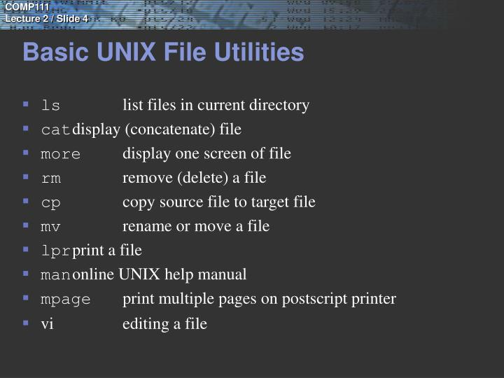 Basic UNIX File Utilities