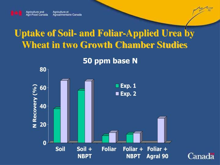 Uptake of Soil- and Foliar-Applied Urea by Wheat in two Growth Chamber Studies