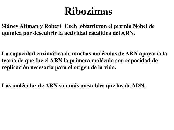 Sidney Altman y Robert  Cech  obtuvieron el premio Nobel de química por descubrir la actividad catalítica del ARN.