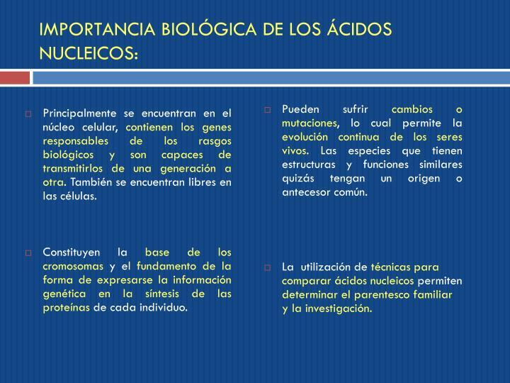 IMPORTANCIA BIOLÓGICA DE LOS ÁCIDOS NUCLEICOS: