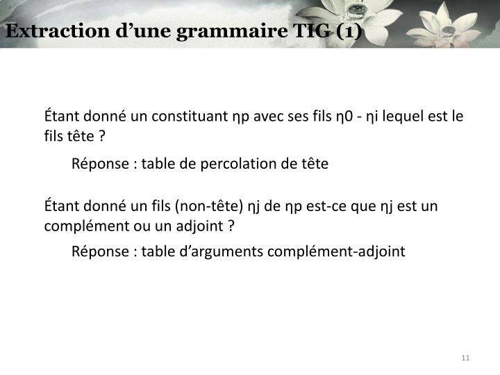 Extraction d'une grammaire TIG (1)