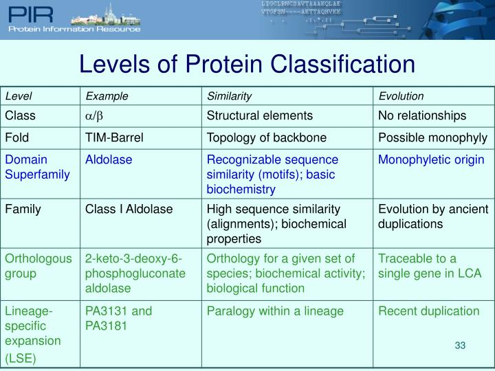 Levels of Protein Classification