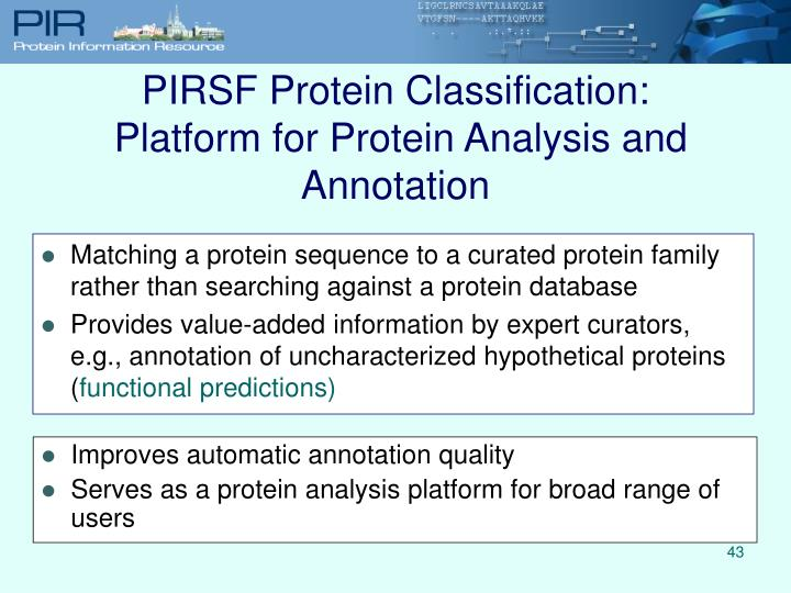 PIRSF Protein Classification: