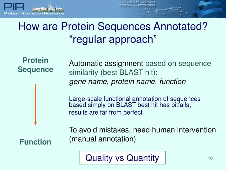 How are Protein Sequences Annotated?