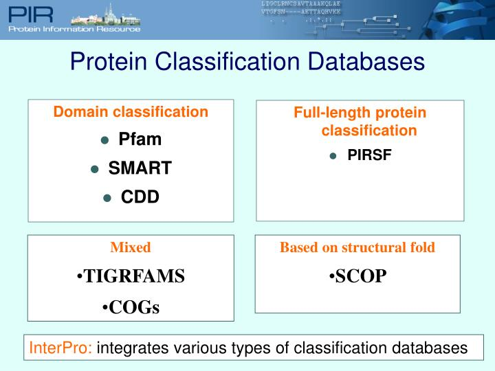 Full-length protein classification