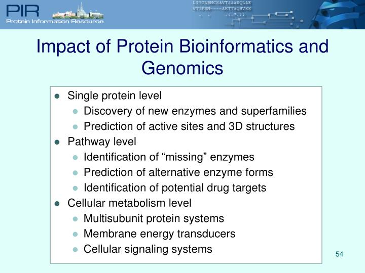 Impact of Protein Bioinformatics and Genomics