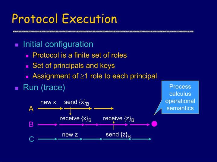 Protocol Execution