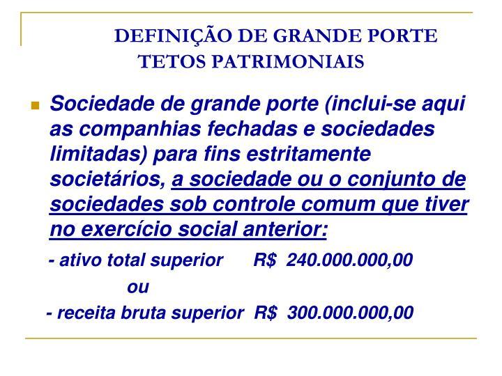 DEFINIÇÃO DE GRANDE PORTE