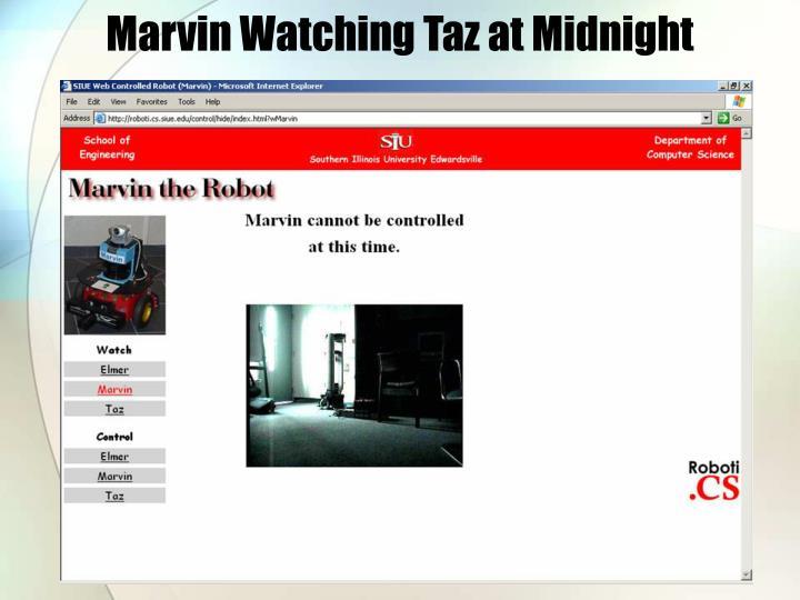 Marvin Watching Taz at Midnight