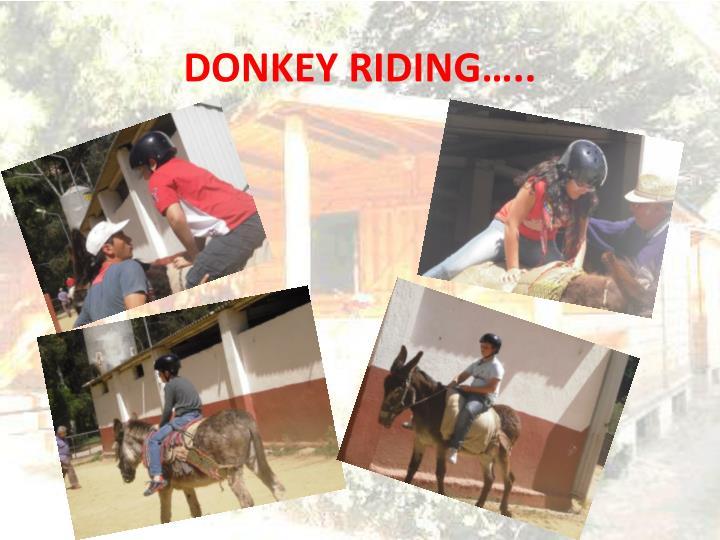 DONKEY RIDING…..