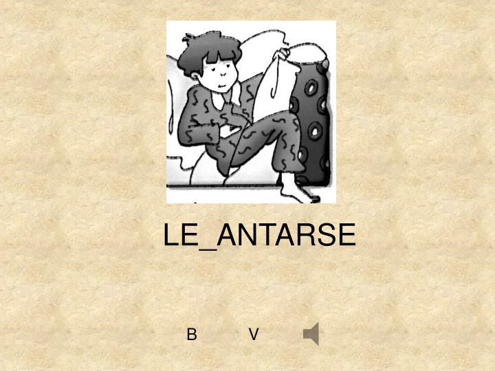 LE_ANTARSE