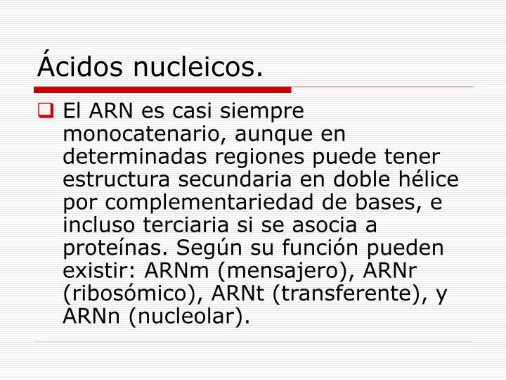 Ácidos nucleicos.