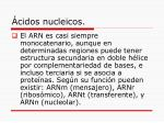cidos nucleicos8