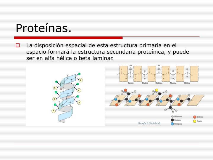 Proteínas.