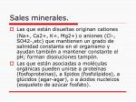 sales minerales1