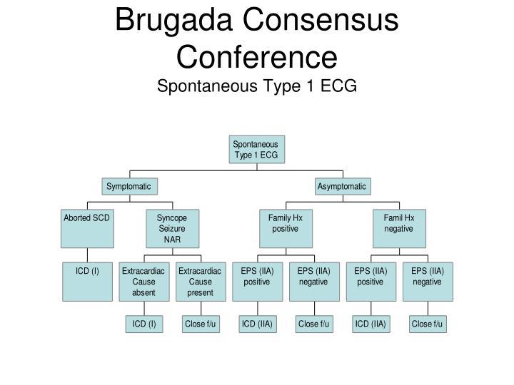 Brugada Consensus Conference