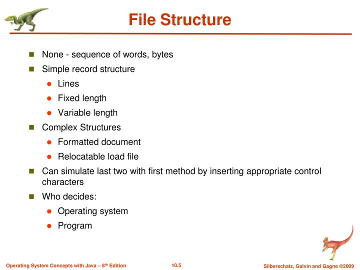 File Structure