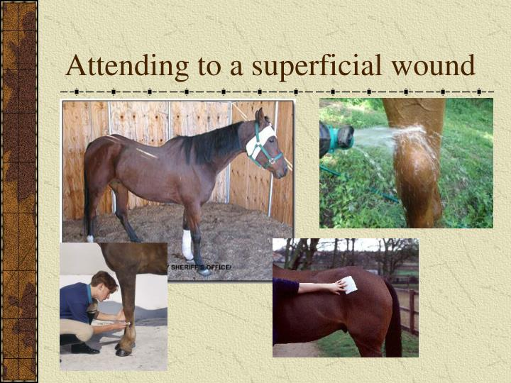 Attending to a superficial wound