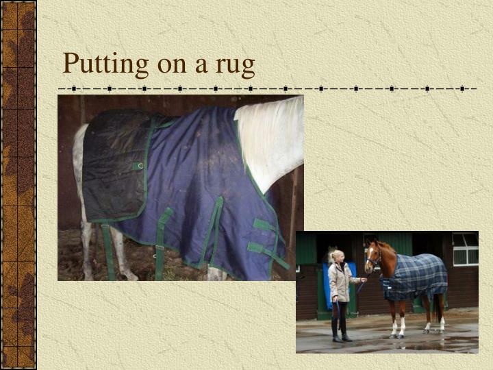 Putting on a rug