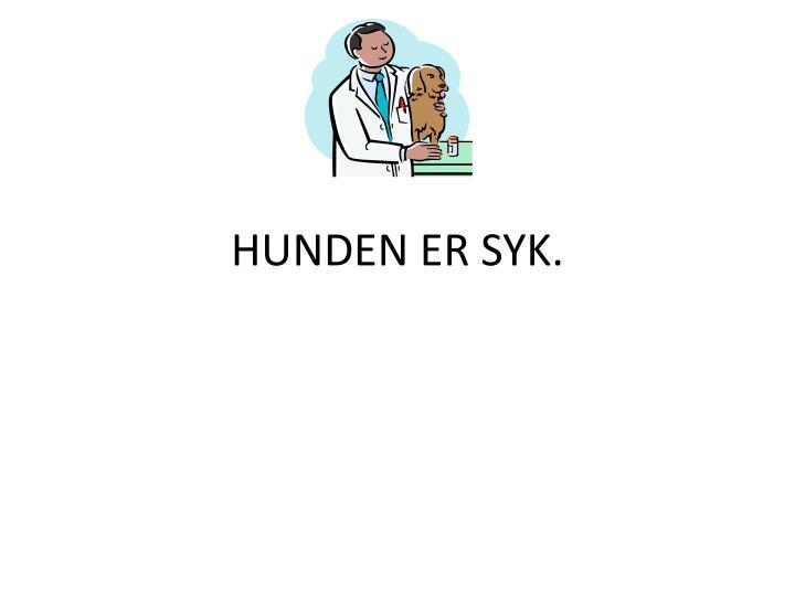HUNDEN ER SYK.