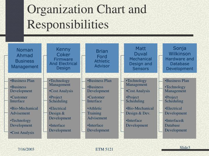 Organization chart and responsibilities