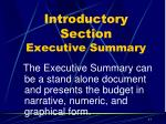 introductory section executive summary