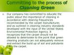 committing to the process of cleaning green7