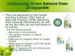 introducing green balance from bridgepoint