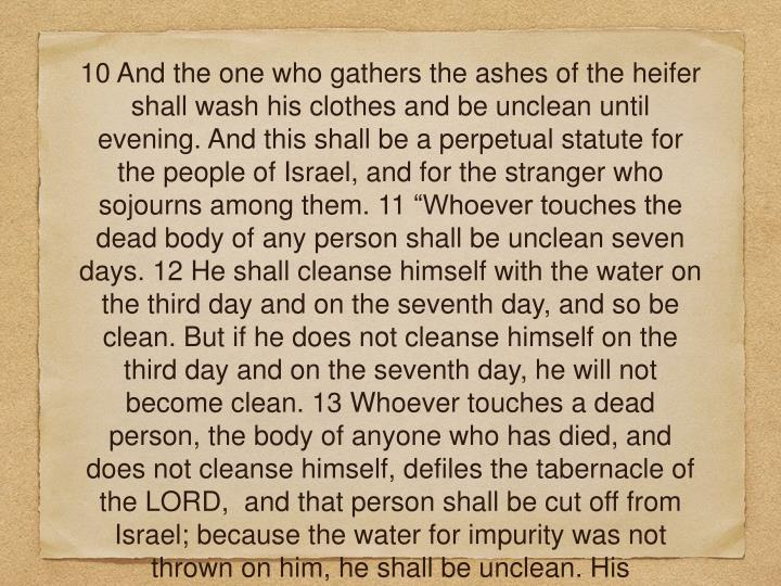 "10 And the one who gathers the ashes of the heifer shall wash his clothes and be unclean until evening. And this shall be a perpetual statute for the people of Israel, and for the stranger who sojourns among them. 11 ""Whoever touches the dead body of any person shall be unclean seven days. 12 He shall cleanse himself with the water on the third day and on the seventh day, and so be clean. But if he does not cleanse himself on the third day and on the seventh day, he will not become clean. 13 Whoever touches a dead person, the body of anyone who has died, and does not cleanse himself, defiles the tabernacle of the LORD,  and that person shall be cut off from Israel; because the water for impurity was not thrown on him, he shall be unclean. His uncleanness is still on him."