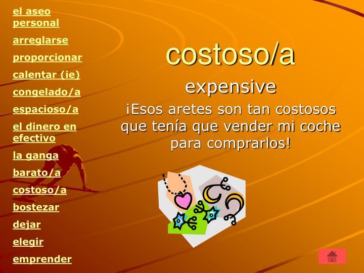 costoso/a