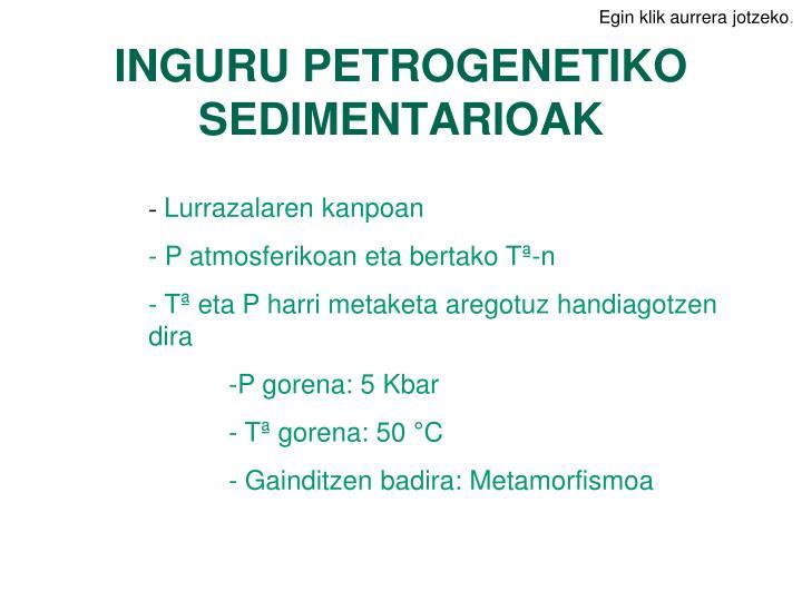 INGURU PETROGENETIKO  SEDIMENTARIOAK
