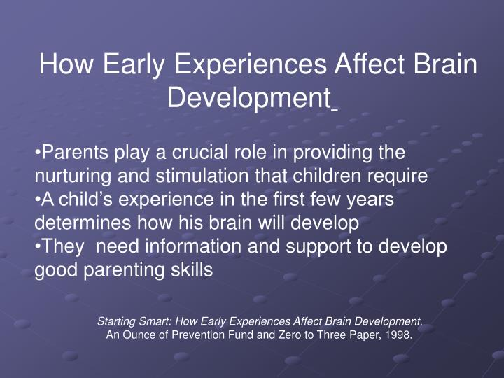 How Early Experiences Affect Brain Development